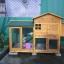บ้านส่วนตัวของสัตว์เลี้ยงlสำเร็จรูป 2 ชั้น หลังคาจั่ว thumbnail 25