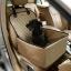 Pet Carrier Dog Car Seat Pad Safe Carry House Cat Puppy Bag thumbnail 7