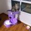 คอนโดแมวทรงเตี้ย ต้นไม้แมว บ้าน ของเล่นแขวน กระบะนอนพัก มีหลายสีให้เลือก thumbnail 15