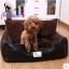 MU0125 ที่นอนโซฟาสำหรับสัตว์เลี้ยง เบาะนอนหมา แมว สไตล์ย้อนยุค ตัวเบาะและเนื้อผ้านุ่มสบาย น่าสัมผัส thumbnail 1
