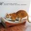 ที่ลับเล็บแมว โซฟาแมวกระดาษลูกฟูก ลายไม้ธรรมชาติ thumbnail 3