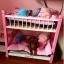เตียงนอนไม้สำหรับหมาแมว มีหลายขนาด แบบ 2 ชั้น มีบันไดขึ้นลงด้านข้าง รุ่นยอดนิยม thumbnail 2