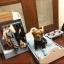เฟอร์นิเจอร์ชุด สำหรับสัตว์เลี้ยงพันธุ์เล็ก เตียงนอน ชาม ตู้เสื้อผ้า thumbnail 21