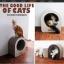 ของเล่นแมว ที่ลับเล็บแมวลูกฟูก รูปทรงกลม thumbnail 2