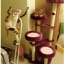 MU0080 คอนโดแมวสี่ชั้น ต้นไม้แมว มีบ้านอุโมงค์เบันได กระบะนอน ของเล่นแขวน สูง 152 cm thumbnail 4