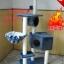 MU0056 คอนโดแมวห้าชั้น ต้นไม้แมว มีบ้านอุโมงค์ กระบะนอน ของเล่นแขวน สูง 150 cm thumbnail 13