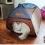 MU0016 เต๊นท์นอนอุโมงค์แมว ตาข่าย ระบายอากาศได้ดี FOLDING CAT TENT thumbnail 4
