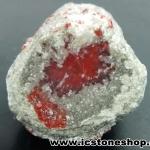 ปะการังแดงกลายเป็นหินจากยูท่าห์ USA (38g)
