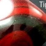 ไทเกอร์ไอออน (Tiger Iron)