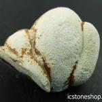 ▽หินเทพธิดา Menalite (Goddess stone) หินของการเจริญเติบโต (16g)