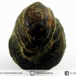หินมงคลทรงแปลกจากถ้ำหินเหล็กประเทศลาว (13g)