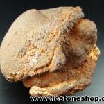หินเหล็กรูปเต่า จากประเทศลาว(723g)