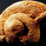 หอยโบราณ เชื่อว่าหอยศักดิ์สิทธิ์ในถ้ำลาว
