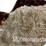 หินดาวตกชนิดโลหะ Muonionalusta จาก Sweden