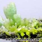▽ไพโรมอร์ไฟต์ Green Pyromorphite (82g)