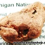 ทองแดงธรรมชาติจากมิซิแกน ขัดมัน(35g)