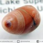 ทอมโซไนท์ (Thomsonite)ทะเลสาบสุพีเรียในมินนิโซตา (0.6g)