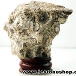 ไรโอไลต์ตานก Birds Eye Rhyolite ตั้งโต๊ะ ฐานไม้ (85g)
