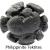สะเก็ดดาว Philippinite
