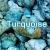 เทอร์ควอยส์ (Turquoise )