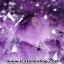 ▽โพรงอเมทิสต์ ( Amethyst Geode) ตั้งโต๊ะ (17.66KG) thumbnail 12