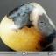 เดนไดทริก อาเกต Dendritic Agateขัดมันจากมาดากัสการ์ (50g) thumbnail 6