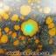 ▽พลอยเทอร์ควอยส์แท้จากทิเบต Turquoise (31ct.) thumbnail 3
