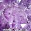 ▽โพรงอเมทิสต์ ( Amethyst Geode) ตั้งโต๊ะ (17.66KG) thumbnail 17