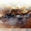 เดนไดทริก อาเกต Dendritic Agateขัดมันจากมาดากัสการ์ (39g) thumbnail 9