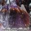 โพรงอเมทิสต์-คาค็อกซิไนท์ ขนาดใหญ่ ร่ำรวย มั่งคั่ง เสริมบารมี ( Amethyst-Cacoxenite Geode) 194KG thumbnail 18