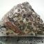 ▽หินลีโอพาร์ดสกินแจสเปอร์ -Leopard Skin Jasper - (35g) thumbnail 4