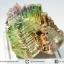 บิสมัท Bismuth รูปแบบแร่ที่มนุษย์ทำขึ้น(18.6g) thumbnail 2