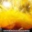 ▽=โปรโมชั่น= พลอยไหมทอง Golden Rutilated Quartz (59.50ct.) thumbnail 4