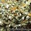 กลุ่มแร่แอนไฮไดรท์ (Anhydrite with Quartz on Calcite) (4.2kg) thumbnail 4