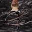 Steins;Gate - Kurisu Makise 1/8 Complete Figure(Pre-order) thumbnail 4