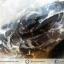 ▽เดนไดทริก อาเกต Dendritic Agateขัดมันจากมาดากัสการ์ (37g) thumbnail 4
