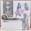 S.H. Figuarts - Body-chan DX SET (Gray Color Ver.) (In-stock) thumbnail 1