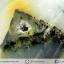 เดนไดทริก อาเกต Dendritic Agateขัดมันจากมาดากัสการ์ (39g) thumbnail 4
