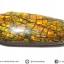 พลอยแอมโมไลต์ (Ammolite) อัญมณีโลกล้านปีสุดหายาก (3.07ct.) thumbnail 7