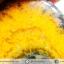พลอยบัมเบิ้ลบี แจสเปอร์ Bumble Bee Jasper รูปเปลวไฟ (12.95ct.) thumbnail 5
