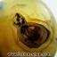 เดนไดทริก อาเกต Dendritic Agateขัดมันจากมาดากัสการ์ (93g) thumbnail 5