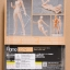 figma - archetype next:she flesh color ver. thumbnail 2