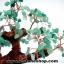 ▽ต้นไม้มงคลกรีนอะเวนจูรีน Green Aventurine thumbnail 2