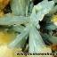 กลุ่มแร่แอนไฮไดรท์ (Anhydrite with Quartz on Calcite) (4.2kg) thumbnail 16