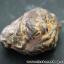 ▽แร่ภูเขาควาย หินมงคลจากภูเขาควาย (9g) thumbnail 2