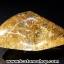 ▽=โปรโมชั่น= พลอยไหมทอง Golden Rutilated Quartz (35.50ct.) thumbnail 5