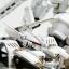 """V.I. Series Armored Core 1/72 Rosenthal CR-HOGIRE """"noblesse oblige"""" Plastic Model(Pre-order) thumbnail 14"""