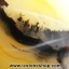 """▽""""เลข 8"""" เดนไดทริก อาเกต Dendritic Agateขัดมันจากมาดากัสการ์ (67g) thumbnail 9"""