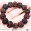 สร้อยข้อมือ เมล็ดรุทรักษะ เมล็ดน้ำตาพระศิวะ (16-18mm.) thumbnail 1