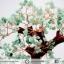 [โปรโมชั่น] ต้นไม้มงคล อเวนจูรีน Green Aventurine (สูง 32 cm) thumbnail 7